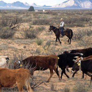 Democrats And Republicans Debate Public Lands Bills In House Natural Resources Committee