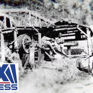Is it out there? Gold miners search for decades old mill
