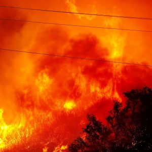 JUST IN: California Officials Give Update On Alisal Fire